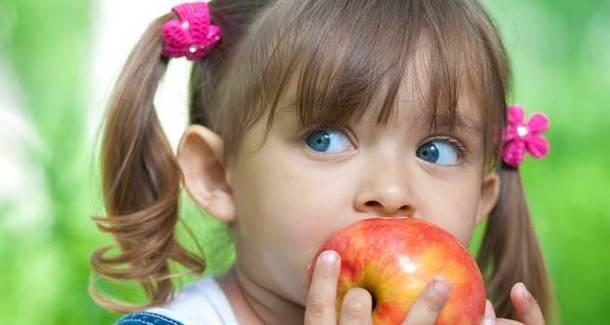 Родители смогут жаловаться на питание в садах и школах