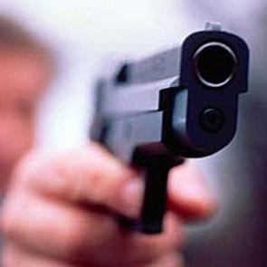 Депутаты занялись темой детей и оружия