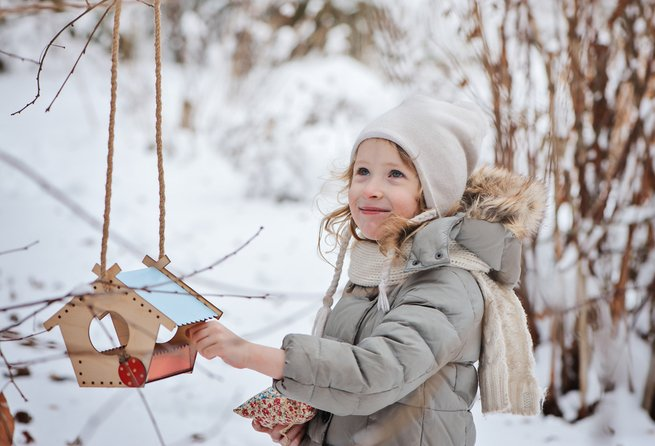 Примите участие в акции «Покормите птиц зимой»