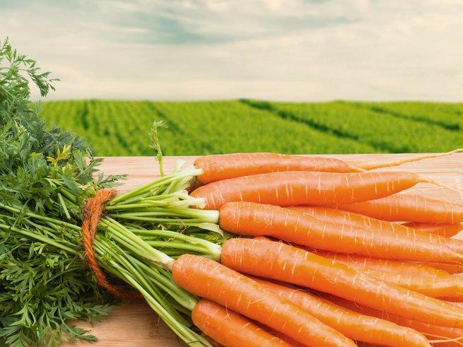 Чем полезен витамин РР (никотиновая кислота)