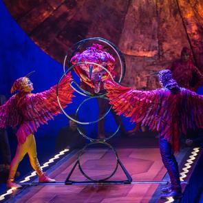 """5 причин сходить на шоу Cirque du Soleil """"Luzia"""""""