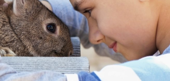 В Московском зоопарке будут читать лекции для детей