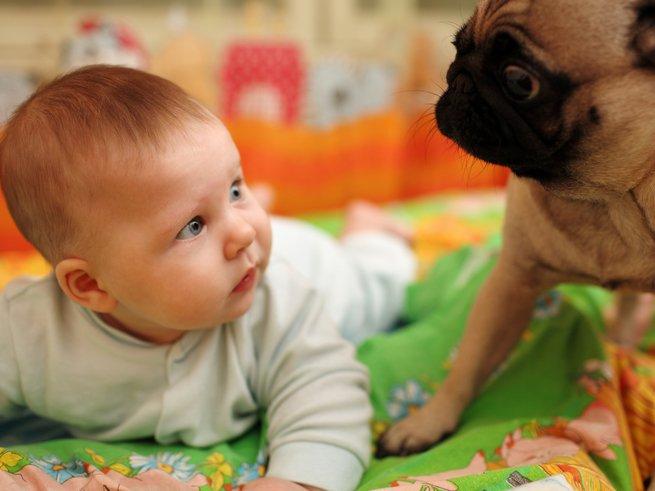 Как научить ребёнка разговаривать в 1 год