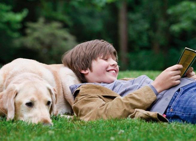 Собаки научат детей читать