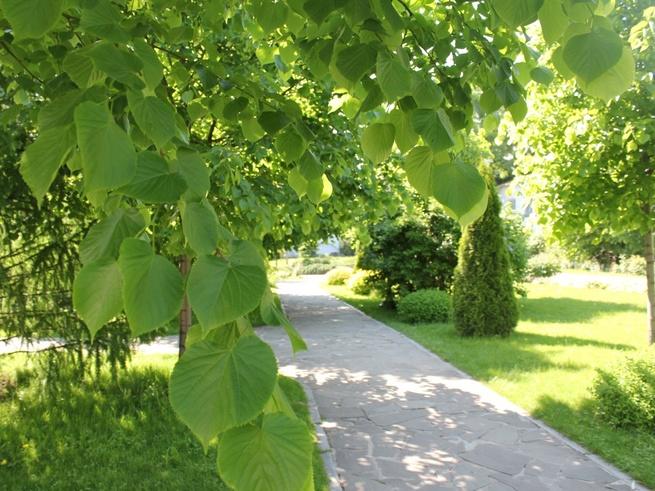 5 малоизвестных парков столицы