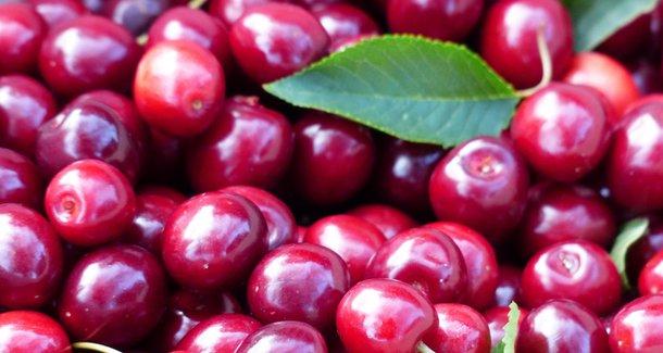 Чем полезен витамин А (ретинола ацетат)
