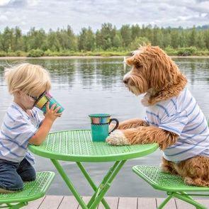 Трёхлетний Бадди и  его лабрадудль стали звёздами интернета