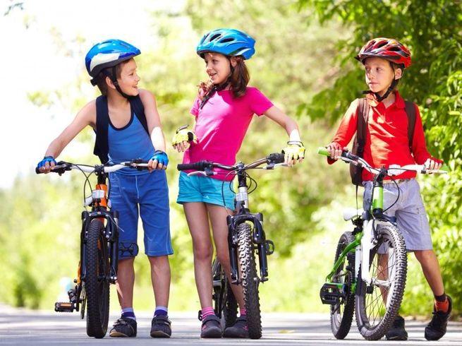 5 мест, где можно взять напрокат велосипеды