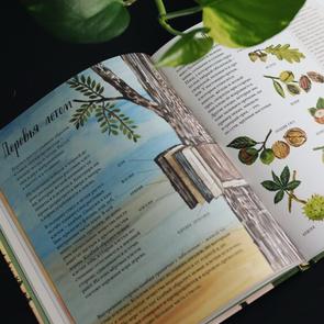 6 удивительных и необычных книг для детей