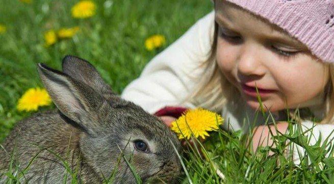 Московский зоопарк ждёт юных любителей природы