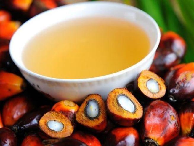 В детских продуктах питания запретят пальмовое масло