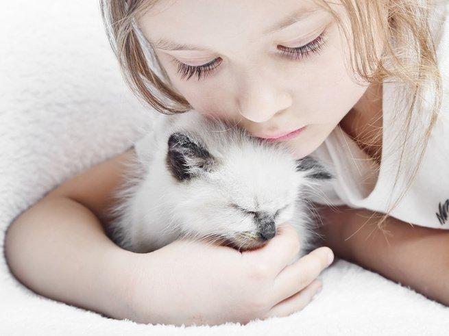 Домашние питомцы предотвращают аллергию