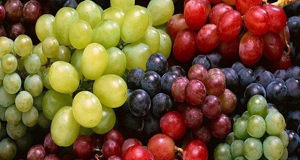С какого возраста можно давать ребёнку виноград?