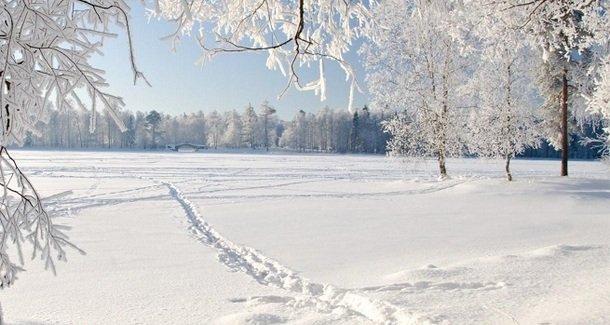 Особенности зимней прогулки с новорожденным