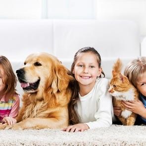 Что нужно знать, прежде чем завести домашнего питомца для ребёнка