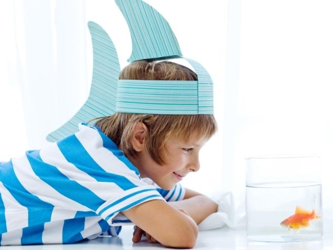Ваш любимый дошколёнок: развитие ребёнка в 5–6 лет