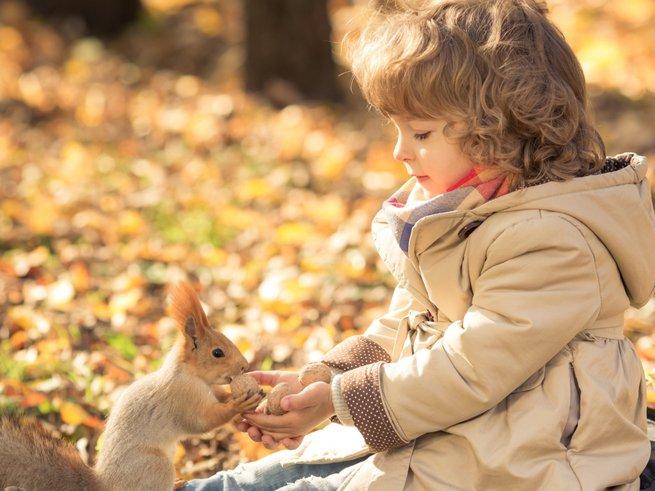 Чем лечить заложенность носа у ребёнка