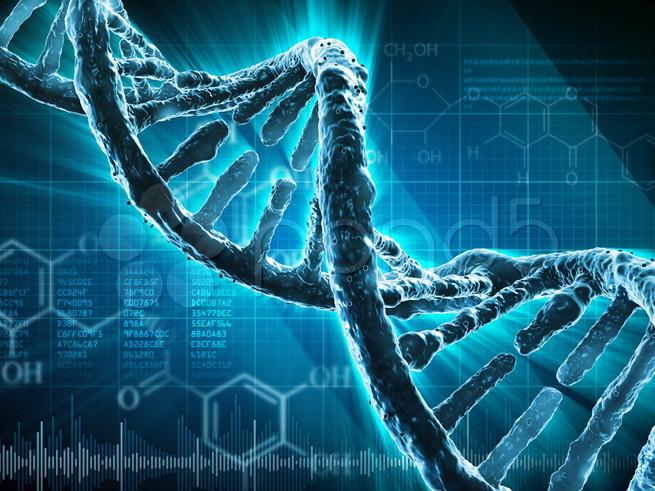 Обстоятельства личной жизни определяются генетически