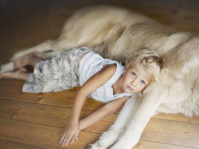 Сильный кашель до рвоты у ребенка: что делать?
