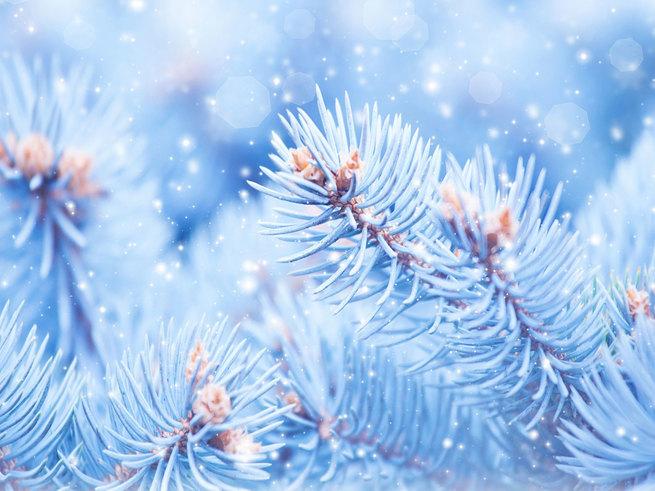 Учёные объяснили, почему зимой воздух в квартирах токсичен