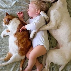 Мамин опыт: дети должны расти с домашними животными