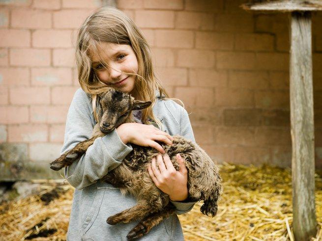 Общение без границ ждёт малышей в Контактном зоопарке