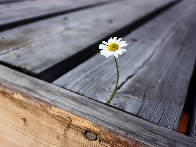 Как пережить одиночество?