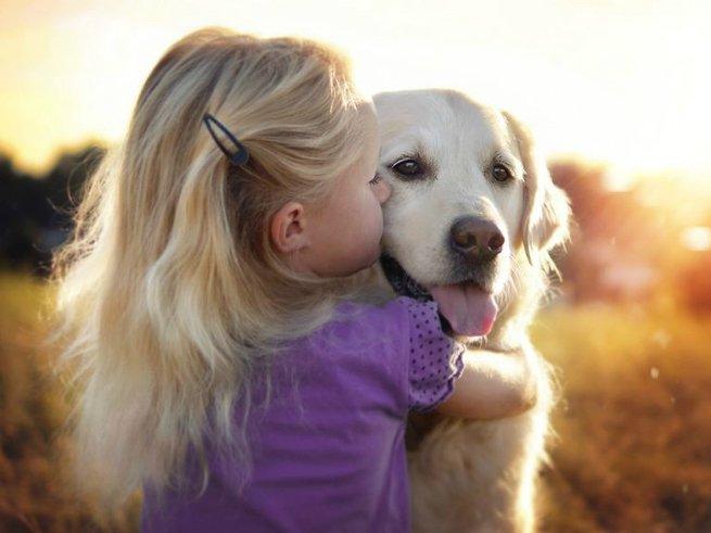 5 причин, почему собака сделает ребёнка счастливым