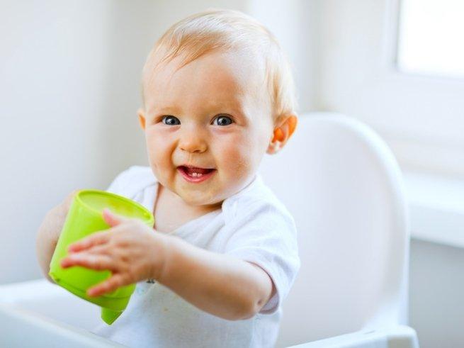 Всё, что нужно знать о молочной кухне