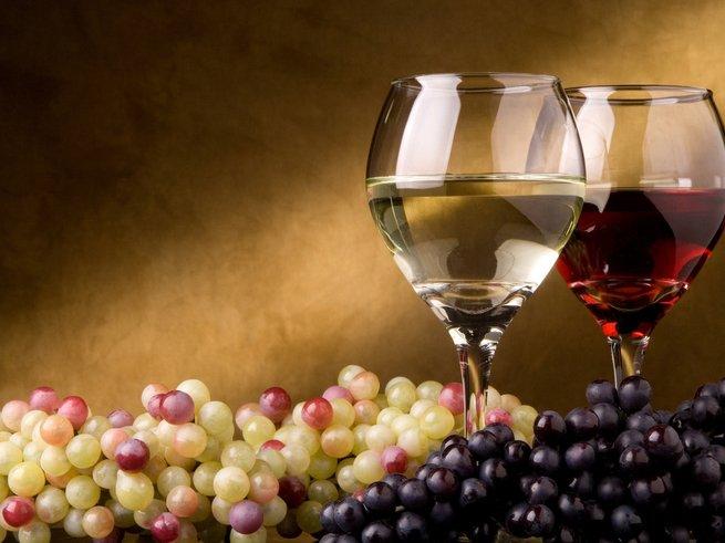 В школах Италии предложили ввести «винкультуру»