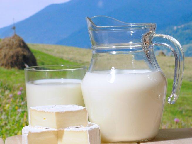 Чем полезно молоко для организма
