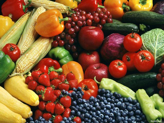 Зоозащитники предложили детсадам перейти на вегетарианское меню