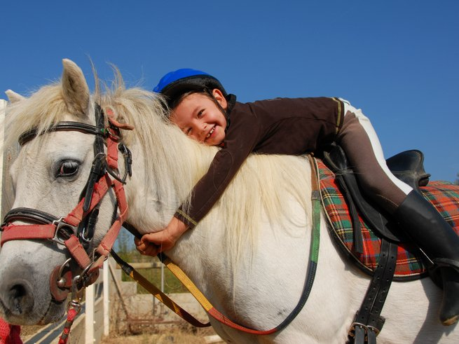 В «Золотой подкове» можно покататься на лошадях