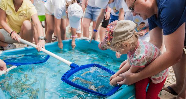 На черноморском побережье прошел эко-фестиваль «Выпусти рыбку»