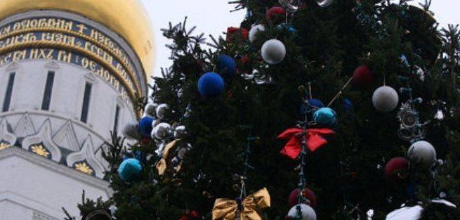 Самую главную ёлку страны срубят 16 декабря