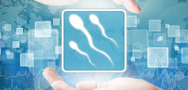 Причины и профилактика мужского бесплодия