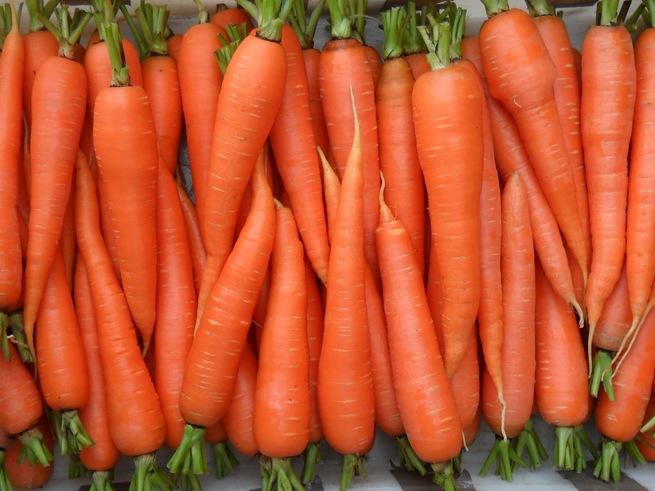 Потерянное обручальное кольцо оказалось в плену у морковки