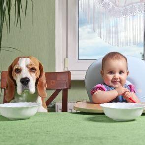 ФОТО: 20 доказательств того, что собака - лучший друг ребенка