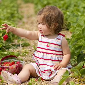 10 важных причин отвезти ребенка на дачу