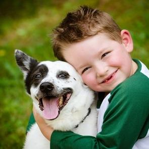 10 способов научить малыша любви к животным