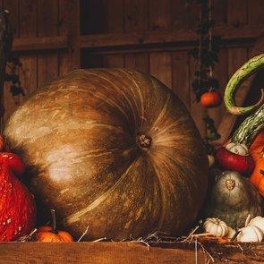 5 жутко интересных детских книг к Хэллоуину