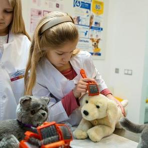 В «Мастерславле» открылся ветеринарный кабинет