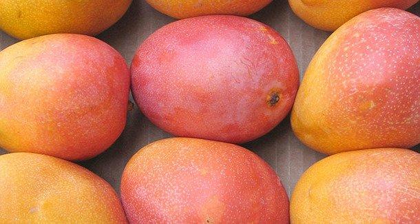 Манго: какие лечебные свойства есть у «короля фруктов» ?
