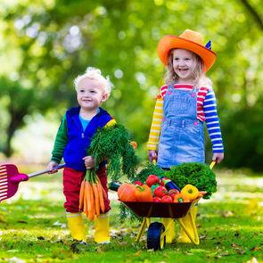 5 осенних продуктов для повышения детского иммунитета