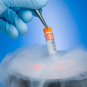 В Китае родился ребёнок из замороженного 16 лет назад эмбриона