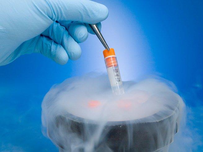 Серийный  донор спермы стал отцом 22 детей от 18 женщин