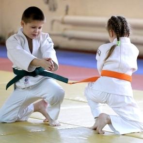 Занятия восточными единоборствами снижают количество физической агрессии