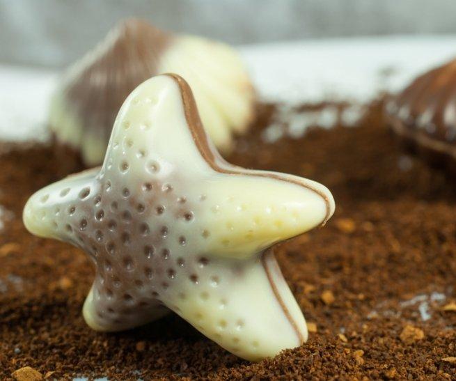 В России создан шоколад долголетия с морскими звёздами