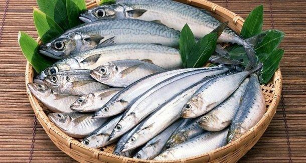Когда и какую рыбу можно вводить в прикорм ребенку