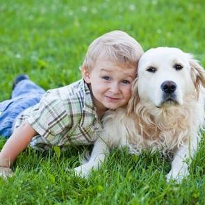 Ребята и зверята: какого питомца завести, если в доме ребёнок